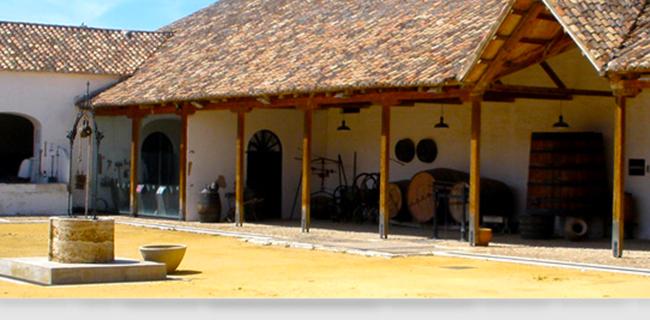 Fotografía de Museo del Vino de Valdepeñas