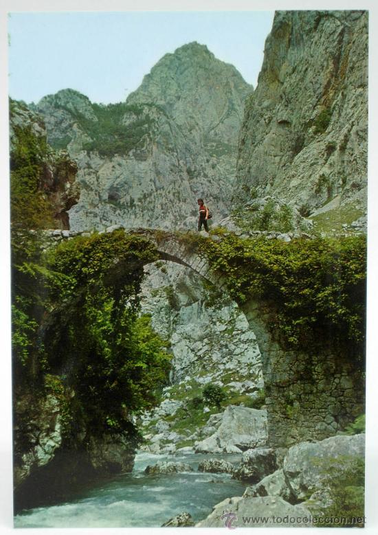 Puente de La Jaya
