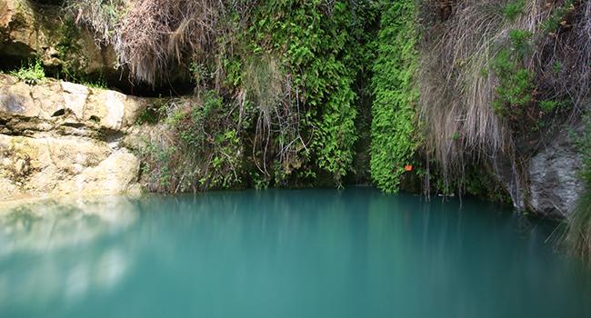 piscinas naturales en alicante