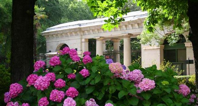 Jardin Botánico Madrid