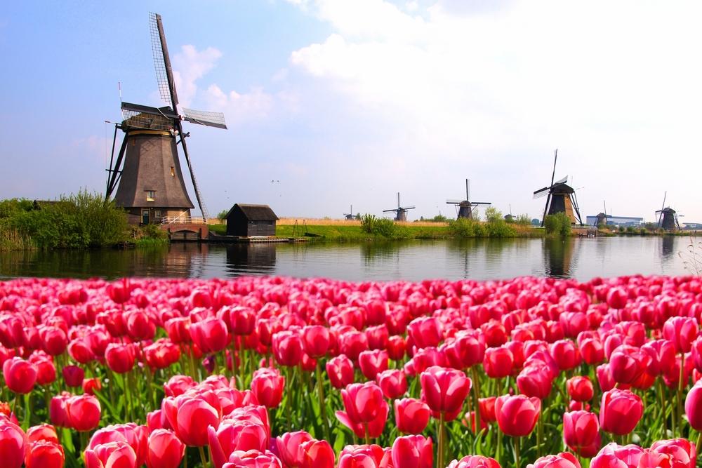 Holanda, queso a queso